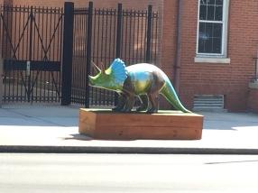 Triceratops - MY FAV!!