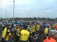 some of the 7,000 cyclists ready to go!