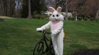 stunt bunny